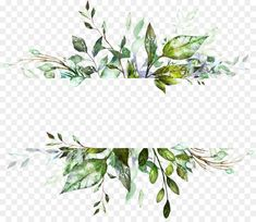 Watercolor Flower Background transparent png is about Drawing, Watercolor Painting, Painting, Digital Art Watercolor Flower Background, Flower Background Wallpaper, Watercolor Plants, Flower Backgrounds, Watercolor Paintings, Flower Watercolor, Picsart Png, Wedding Cards, Wedding Invitations