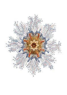 Dr.Ernst Haeckel. Sea Urchin Coastal Decor Fantasy Sea Life Giclee Art Print. Blue Nautical Picture Bathroom Decor. Ocean Sealife Urchin