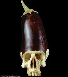 Eggplant Carving by Dimitri Tsykalov. repinned by Dominex Eggplant Company