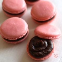 Know how to make macarons, whether it be with the French meringue or Italian meringue method, and discover the pleasure in creating these chic, dainty confections.  This step-by-step tutorial will …