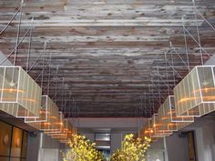 #knockonwood  http://www.elmwoodreclaimedtimber.com/FileUploads/white-bs1.jpg (CEILINGS)