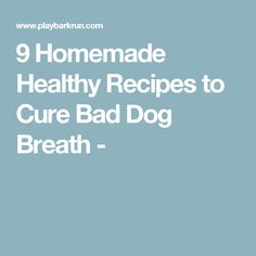9 Homemade Healthy Recipes to Cure Bad Dog Breath -
