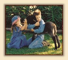 Quarter Moon Ranch, Breeder of Registered Miniature Donkeys -  Care of the Miniature Donkey