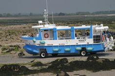 Saint-Vaast la Hougue, bateau amphibien traversée de Tatihou à marée basse