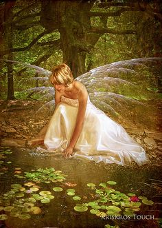 Fairy - fairies from 'The Chronicling of Ilithia' by Ashlee North - out soon http://ashleenorthauthor.com/