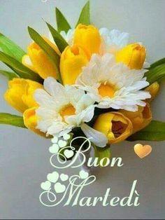 Italian Memes, Bellisima, Floral Arrangements, Good Morning, Facebook, Plants, Tuesday, Angelo, Anna