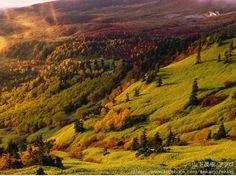 ここがグンマー?渋峠から見た「芳ヶ平」はジオラマのような驚きの絶景