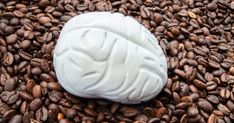 Caffeine consumption found to alter brain structure Reichert is also cautious to note this study does not imply caffeine consumption damages cognitive functioning. In fact, there has been a notable volume of recent research pointing to the contrary, showing caffeine seems to be somewhat neuroprotective, slowing cognitive decline in older subjects at high risk of conditions such as Alzheimer's and Parkinson's Healthy Brain, Brain Food, Brain Science, Types Of Neurons, Slow Wave Sleep, Cerebral Cortex, Brain Structure, White Matter, Gray Matters