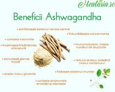 Ashwagandha, numită şi ginseng indian, este un arbust care creşte in India, Orientul Mijlociu si regiuni din Africa.💪🌿🌱🙏 ✔ În medicina ayurvedică, veche de peste 5000 de ani în India şi care se practică şi în momentul de față, este considerată o plantă care ajută la menținerea tinereții, atât psihică, cât şi fizică. ✔Este recomandată ca tonic adaptogen, protejând organismul împotriva stresului. ✔De asemenea, îmbunătățeşte sistemul nervos, tratează insomnia şi anxietatea, este un bun… Ayurveda, Vegetables, Instagram, Food, Insomnia, Essen, Vegetable Recipes, Meals, Yemek