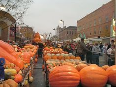 Circleville, Ohio Pumpkin Show.  I've always wanted to go to this.