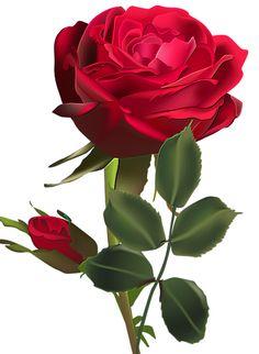 сообщение kru4inka : Клипарт - *Цветы* в формате png - для Вашего творчества (11:47 05-04-2014) [3408168/319952619] - amicamia.meme@gmail.com - Gmail