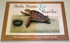 Birds, Beasts and Reptiles: The Natural History Etchings of Mark Catesby (Postcard Books) by Mark Catesby http://www.amazon.com/dp/0764903683/ref=cm_sw_r_pi_dp_cj8Pwb0GTKMK7