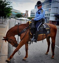 Houston Police Department: July 2010