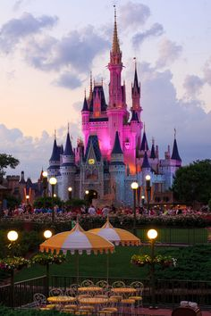 o avoid the Disney hangover by checking out these tips directly from Florida's veteran Disney vacationers for making any trip to the happiest place on earth go as smoothly as possible (or at least as smoothly as it can with small children in tow).