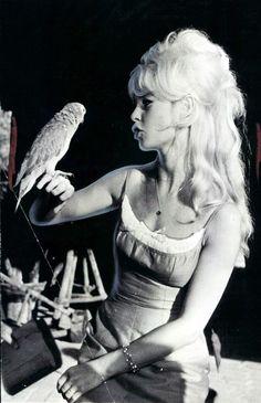 Brigitte Bardot. 1965. vintage. parrot. actress.