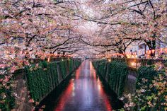 21 Intensely Beautiful Places You Need to See Before You Die  - HouseBeautiful.com