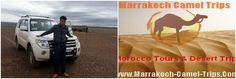 Marrakech Camel Trips Company , Morocco Travel Company, Morocco Desert Tours, Morocco Sahara Desert Trips,Marrakech Camel trips S.A.R.L