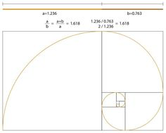 The golden section, Golden Ratio, Golden Mean, Divine Proportion, Phi, φ, are all names for the same, a ratio. And what about Fibonacci? That resembles it, but it is not the same thing. The Golden Ratio is the ratio A (the largest part) / B (the smallest part) = (A + B) / A = φ With this ratio we can make a Golden Ratio spiral. This spiral can continue indefinitely, both smaller and larger. Theoretically, this spiral has no beginning and no end. #GoldenRatio #Spiral #Fibonacci Golden Ratio Spiral, Fibonacci Golden Ratio, Egg Of Life, Divine Proportion, Platonic Solid, Everything Is Connected, All Names, Pyramids Of Giza, Flower Of Life