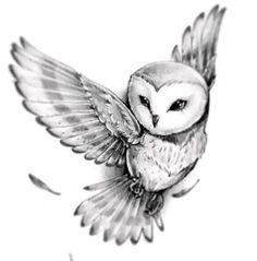 Barn Owl Tattoo Design - 30 Amazing Owl Tattoo Designs and Drawings – Barn Owl - Body Art Tattoos, New Tattoos, Sleeve Tattoos, Cool Tattoos, Tatoos, Awesome Tattoos, Phoenix Tattoos, Tattoo Neck, Wrist Tattoos