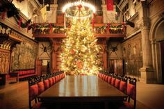 George Vanderbilt first welcomed guests to Biltmore House on Christmas Eve 1895. Today that tradition is kept alive each year as Biltmore House is filled with hundreds of trees and garlands from the area. Each year, the 34-foot-tall Banquet Hall Christmas tree wows Biltmore's guests.
