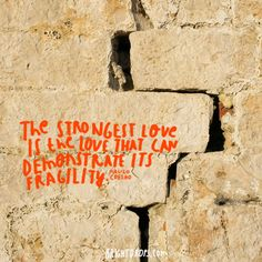 """""""The strongest love is the love that can demonstrate its fragility."""" ~ Paulo Coelho"""