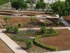 Çimler ekiliyor, bahçe yavaş yavaş şeklini buluyor. :)
