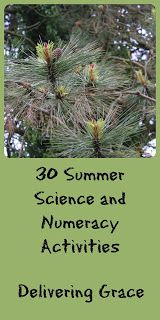 delivering grace: 30 Summer Science and Numeracy activities Numeracy Activities, Summer Science, Nature Study, Home Schooling, Summer Crafts, Learning Resources, Christian Life, Textbook, Homeschool