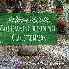 Nature Walks with Charlotte Mason Homeschool {Weekend Links} from HowToHomeschoolMyCHild.com