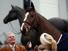 A great of Christmas past - Kauto Star is at Kempton to see a statue of him unveiled Horse Racing Betting Tips, Sport Of Kings, Equestrian, Statue, Photography, Race Horses, Animals, Image, Beautiful
