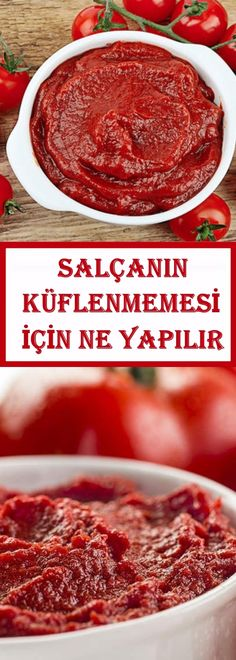 SALÇANIN KÜFLENMEMESİ İÇİN NE YAPILIR Cooking Tips, Cooking Recipes, Yummy Food, Tasty, Turkish Recipes, Food Presentation, Family Meals, Salsa, Snack Recipes