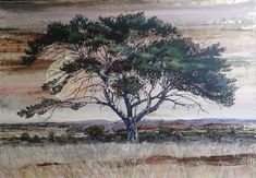 Thorn Tree in Veld. x Oil on Canvas. -Available- Thorn Tree in Veld. Collaboration, Oil On Canvas, Painting, Art, Painted Canvas, Painting Art, Paintings, Kunst, Paint