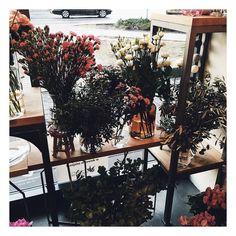 Oto jak się walczy ze swoim wewnętrznym Dzikusem - wpadasz do kwiaciarni i z uśmiechem od ucha do ucha pytasz czy możesz zrobić kilka zdjęć _________ #plants #florist #kwiaciarnia #flowers #bohochic #bohostyle #goździki #gozdziki #bukiet #kwiaty #kwiatysapiekne #floral