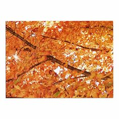 KESS InHouse Sylvia Coomes 'Fall Folioge' Orange Yellow Dog Place Mat, 13' x 18' ^^ Check this awesome image  : Dog food container