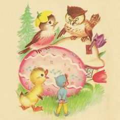 The Enchanted Egg  Written by Peggy Barrows  Illustrated by Elizabeth Webbe    Great Grandmother Owl