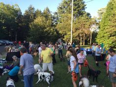 Perk Valley Pet Eatery Dog's Night Out at the Park, July 2014
