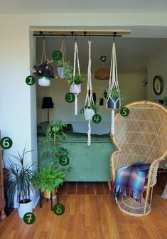 bohemian hanging planters for house plants garden room greenery