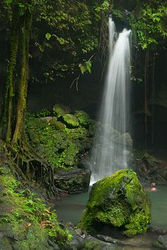 Emerald Pool, Dominica