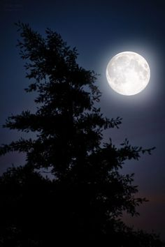 Sky Moon, Moon Art, Blue Moon, Beautiful Moon Pictures, Nature Pictures, Look At The Moon, Moon Photos, Moon Photography, Moon Magic