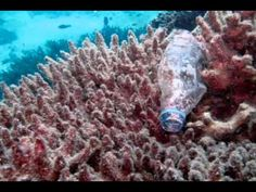 Plastic isn't biodegradable, please use less ▶ Plastic Soup - The Great Pacific Patch - YouTube