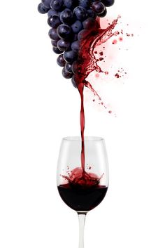 0 grapevines exploding in wine - raisins explosant en vin Art Du Vin, Vides, Types Of Wine, In Vino Veritas, Wine Cheese, Sauvignon Blanc, Wine Time, Wine And Beer, Wine And Spirits