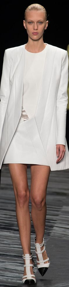 J. Mendel Spring 2015 Ready-to-Wear