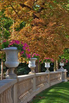 jardins du luxembourg . paris france