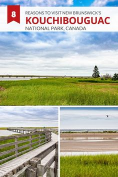 We share eight reasons to visit Kouchibouguac National Park in New Brunswick Canada from pristine sandy beaches to active outdoor adventures. Acadie, New Brunswick Canada, Visit Canada, Canada Trip, Parks Canada, East Coast Road Trip, Canadian Travel, Atlantic Canada, Parc National
