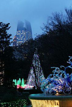 Holiday lights on display at Atlanta Botanical Gardenswwwwsbtv