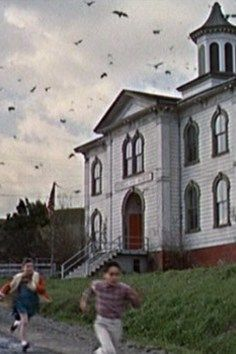 Seeks Ghosts: Alfred Hitchcock's Haunted Schoolhouse Creepiest Horror Movies, Creepy Movies, California Homes, California Travel, Funny Videos, The Birds Movie, Alfred Hitchcock The Birds, Old School House, Bodega Bay