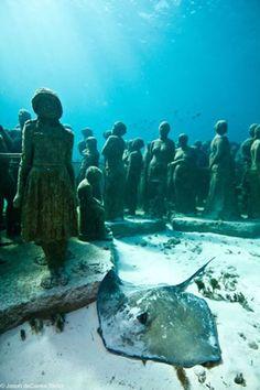 Strange Reefs Strange Caribbean Reefs Scuba, Snorkel http://caribbeantrading.com/strange-reefs/