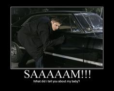 Don't mess with Metallicar. I've had this look on face before....usually while petting a Mustang but I get it!