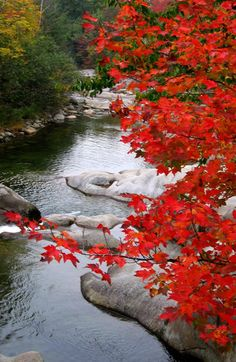 Autumn, Baker River, White Mountains, New Hampshire