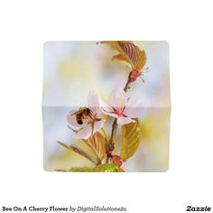 Bee On A Cherry Flower Checkbook Cover