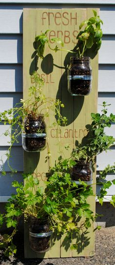 Hanging Herb Garden by DesignsbyJillian on Etsy, $35.00